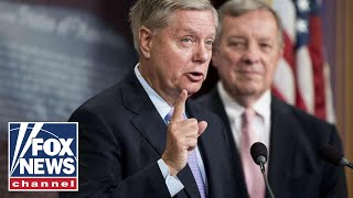 Graham sounds off on Dems: They're on a crusade to destroy Trump