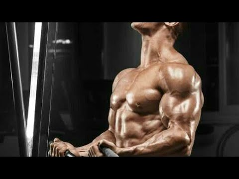 6 packs workout for men  abs workout without gym  how
