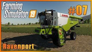 Farming Simulator 19 | Ravenport [HUN] #07
