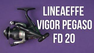 Розпакування Lineaeffe Vigor Pegaso FD 20