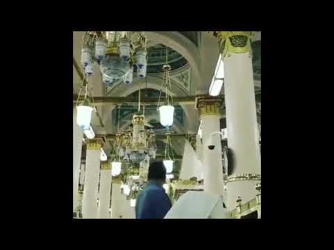 Israeli Blogger Holds Tefillin In Saudi Arabian Mosque