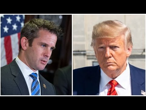 Adam Kinzinger Censured by Illinois GOP for Impeachment After Siding with Trump Over 90% of Time