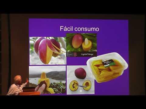 Factores Que Afectan La Calidad Del Mango En La Pre Y Post Cosecha