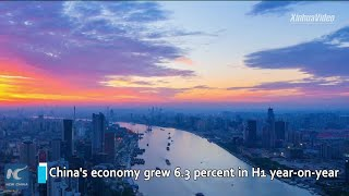 China to maintain steady growth: Indian expert