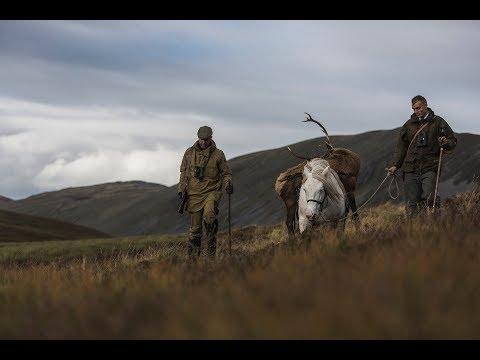 The Highland Stalker