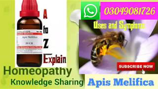 Homeopathic Medicine Melifica Apis for Edema, Dropsy uses and symptoms | Explain