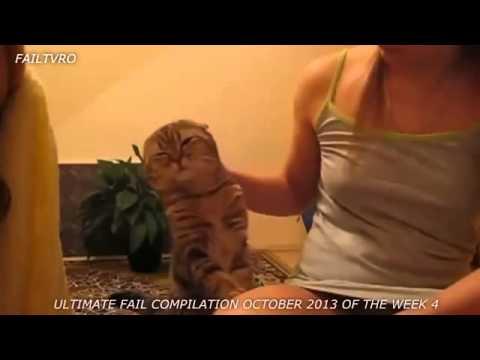 Kumpulan Video Lucu Bikin Ketawa Gokil Video Lucu Banget Bikin Ketawa Ngakak Gokil Kocak 2014 Youtube