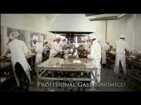 Escuela de gastronomia de azafr n youtube - Escuela de cocina azafran ...