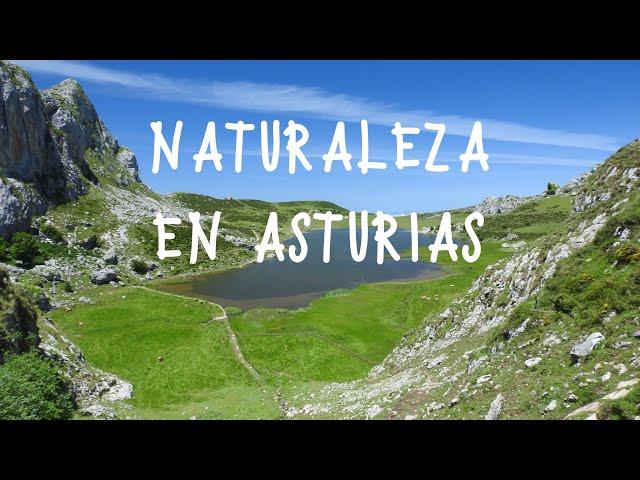 Naturaleza en Asturias