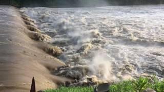 大雨の後の大河津分水路‼️
