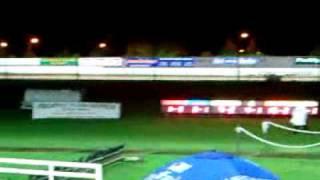 Greyhound Race At Harold's Cross, Dublin