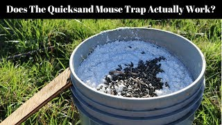 Does The Quicksand Mouse Trap Actually Work? This is Matt Williams ...