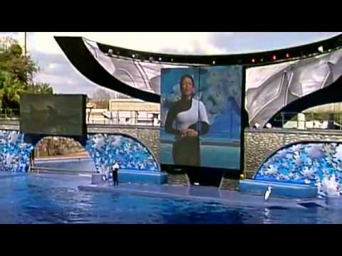 Believe   The Complete Shamu Show at Sea World