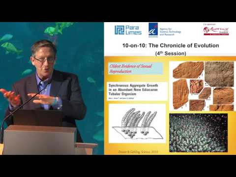 10-on-10: The Chronicle of Evolution - John Long