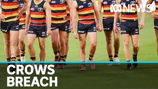 Adelaide Crows avoid police sanction over social distancing 'mistake' | ABC News