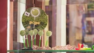 Espagne: les cols blancs du cannabis #Reporters