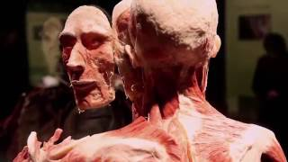 SASK SCIENCE CENTRE BODY WORLDS RX