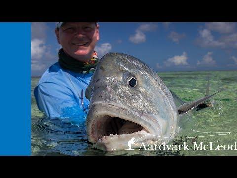 Fly fishing Providence Atoll, Seychelles