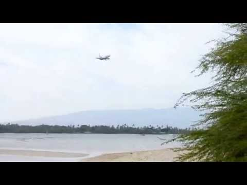 Forrest at Hickam AFB beach
