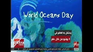 غرفة الأخبار| اليوم العالمي للمحيطات