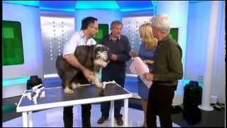 healing poorly pets: noel fitzpatrick, tv's bionic vet