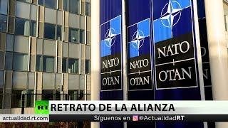 """""""Rusofrenía"""": Analista describe la posición de la OTAN hacia Rusia"""