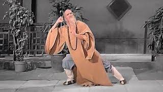 Кунг фу старого мастера   Kung fu old master