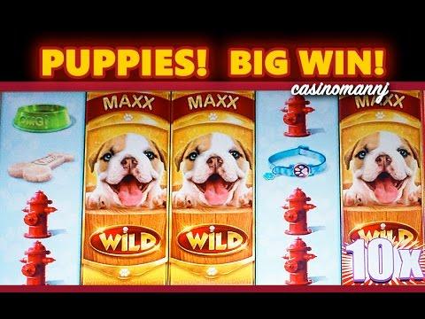 OMG! PUPPIES SLOT - 10X! - **BIG WIN** - Slot Machine Bonus - 동영상