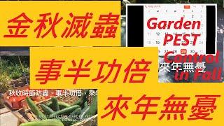 秋收時節滅蟲,事半功倍,來年無憂-- The Most Effective Way in Garden Pest Control is Under Taking in Fall.