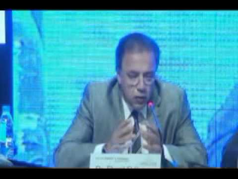 The Egypt Energy & Economy Conference 2013 - Panel 4