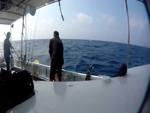 Hong Kong Offshore Fishing :Day Time 4 (4/10)  ボート釣り