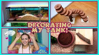 Decorating My Hamster Tank, DIY Stairs, & Secret Project Reveal!