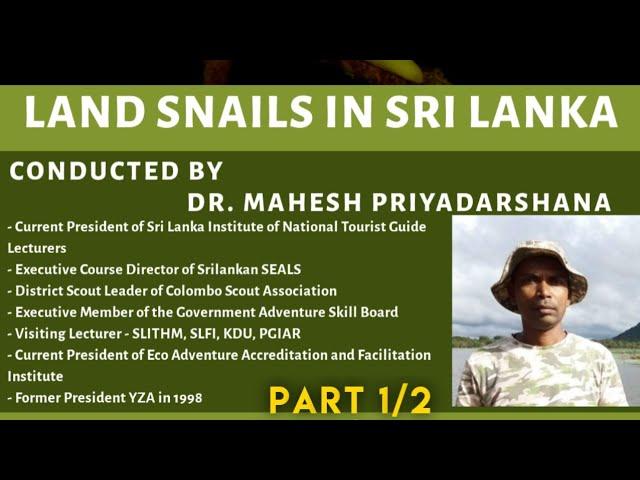 Land Snails in Sri Lanka (10th October 2020) - Part 1/2