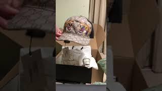 c16fc7faa875a Unboxing 4 Gucci Tiger Supreme Baseball caps