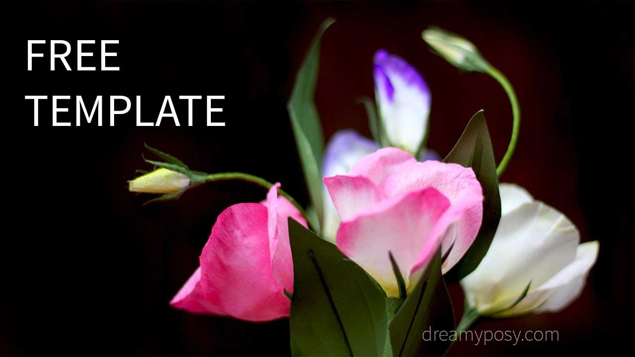 free template  how to make paper lisianthus flower