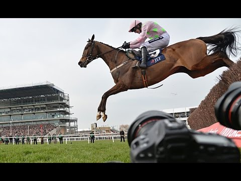 Vautour - Road to the 2017 Cheltenham Gold Cup