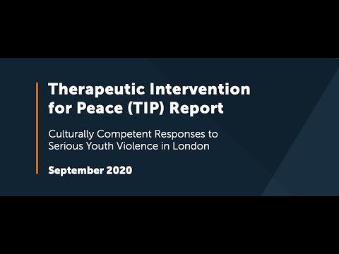 Download Power The Fight: Therapeutic Intervention for Peace (TIP) Report Film (2020)