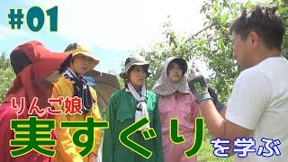 #1『RINGOMUSUMEの産地直送 日本最高!!』実すぐり(摘果)を学ぶ