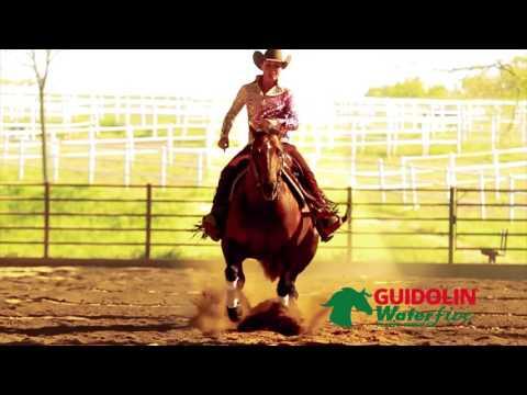 2edb61186e Guidolin Horses – Guidolin Horses offre unalimentazione completa a base di  foraggi a fibra lunga e cereali fioccati per il benessere del tuo cavallo.