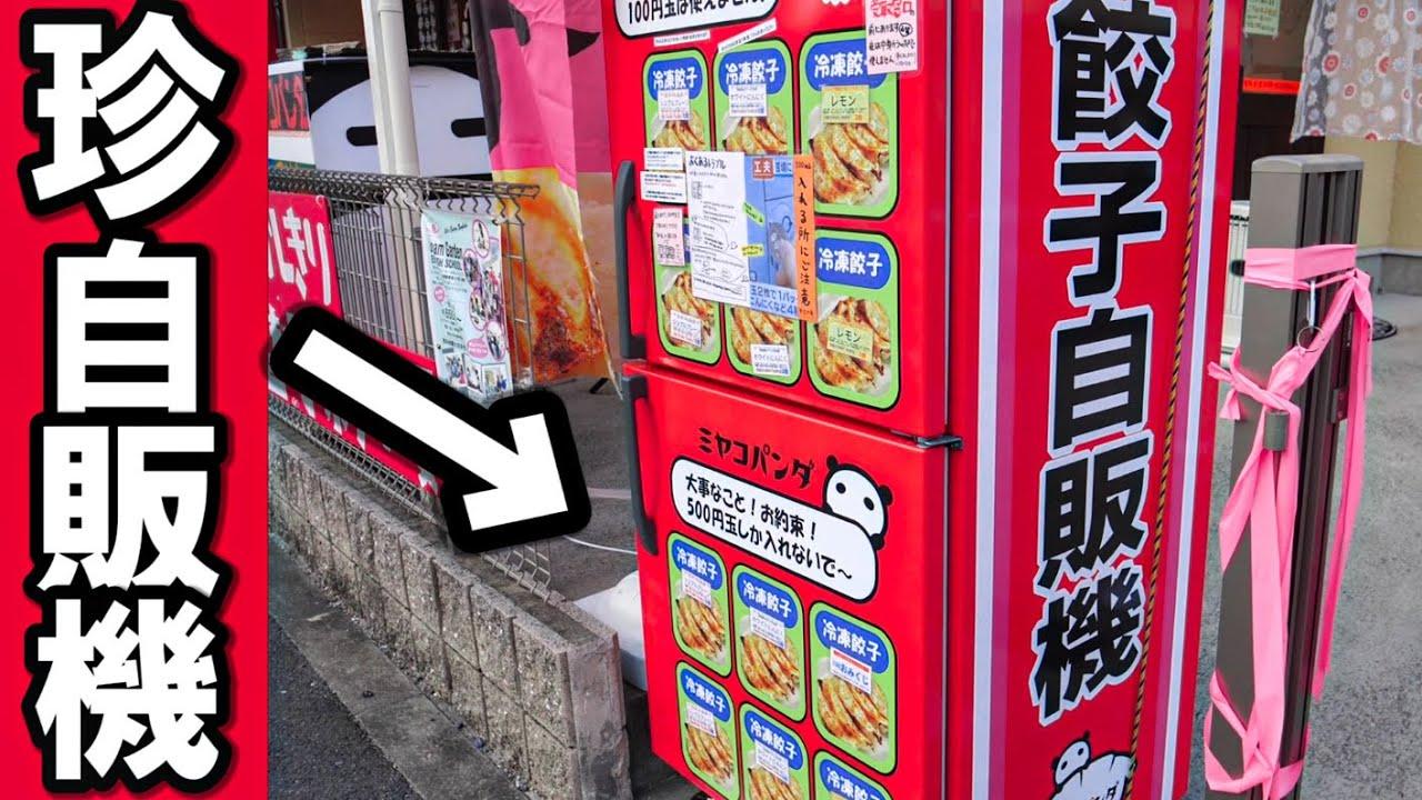 【珍自販機】熱々の餃子を自販機で買ってみた!ウマすぎ!【珍スポット】