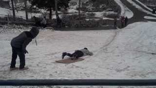 Cardboard Sled Faceplant In Snow At Falls Park