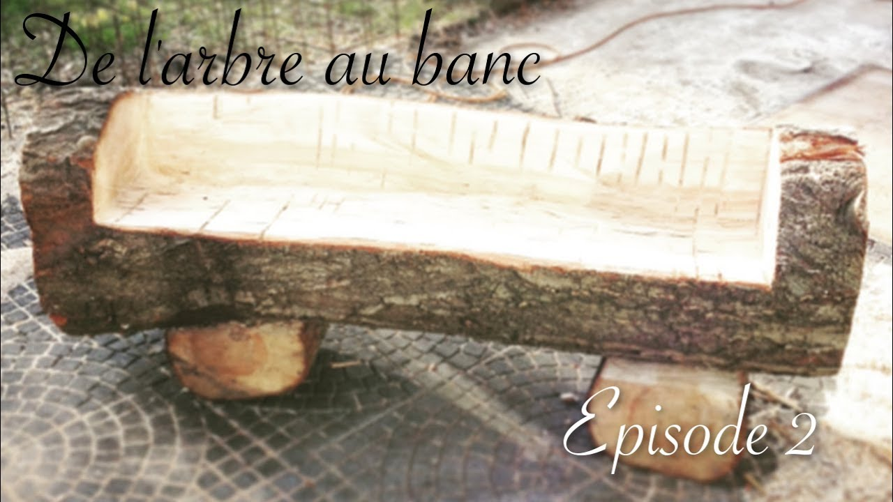 De L'arbre Au Banc  épisode2  Youtube