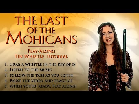 The Last Of The Mohicans - TIN WHISTLE PLAY ALONG TUTORIAL -