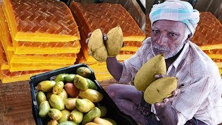 Mango Jelly Sweet making Process With Farm Fresh Ripe Mangos | Making Of Aam Papad | Mamidi  Tandra