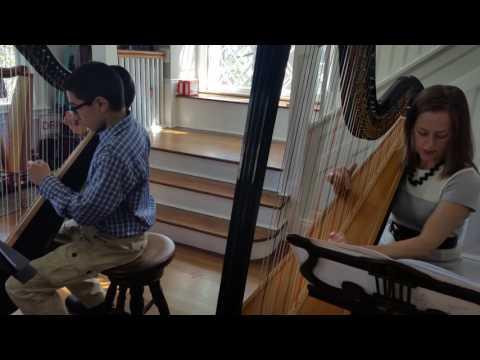 Harp Instructor