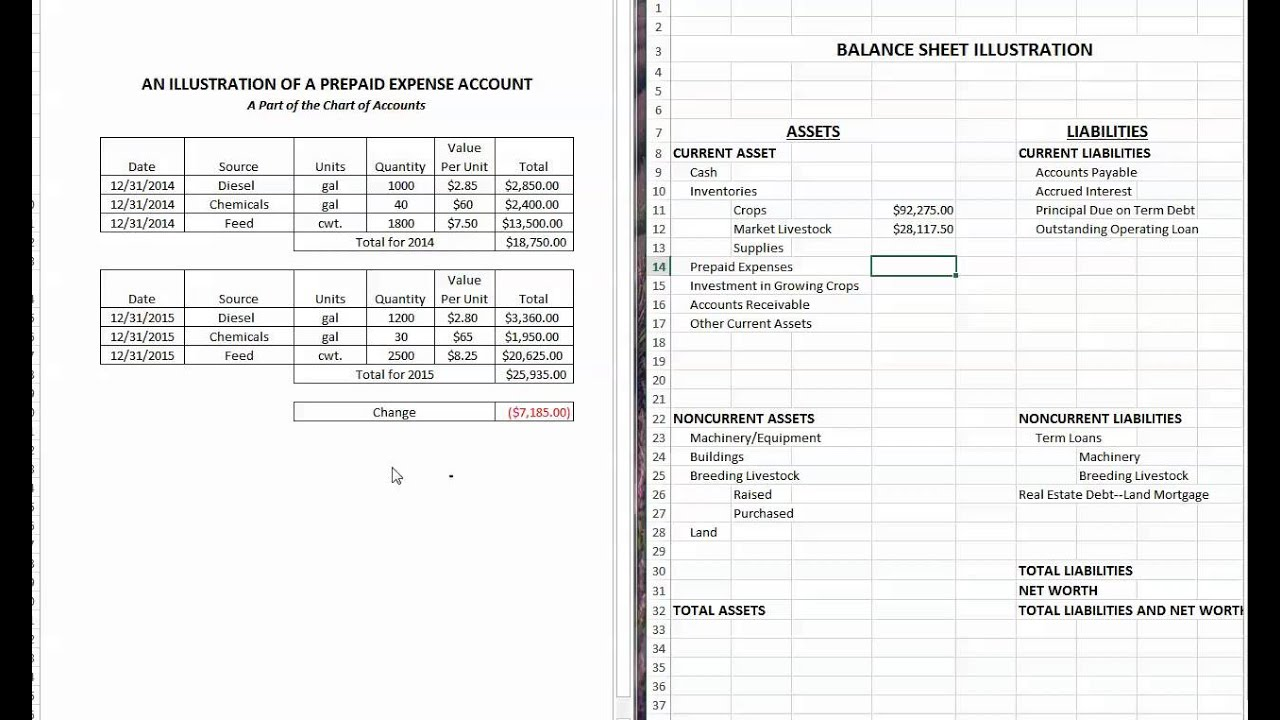 Watch on Accounting Balance Sheet Example