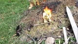 Stuffed Duck On Fire!!!