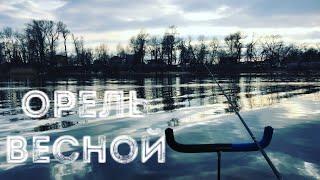 Фидерная рыбалка на реке Орель весення плотва
