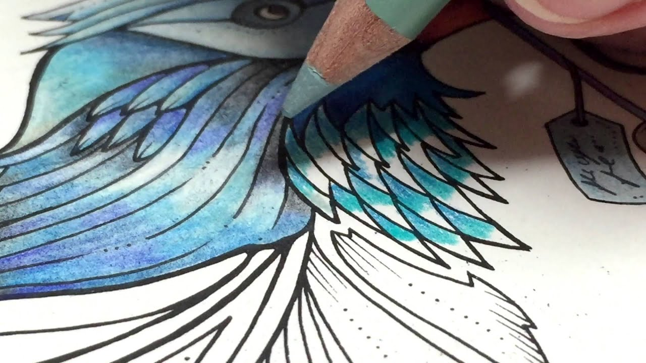 Asmr Adult Coloring Enchanted Forest Blue Bird 5