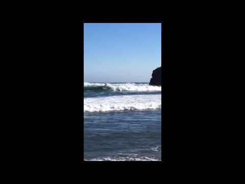 Surfers Break the Waves at Andrew Molera State Park, Big Sur